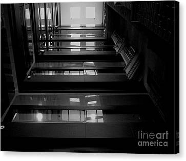 Canvas Print featuring the photograph Inside Outside by Lin Haring