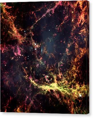 Inside The Crab Nebula  Canvas Print by Jennifer Rondinelli Reilly - Fine Art Photography