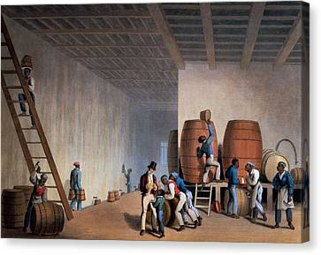 Plantations Canvas Print - Inside The Distillery, From Ten Views by William Clark