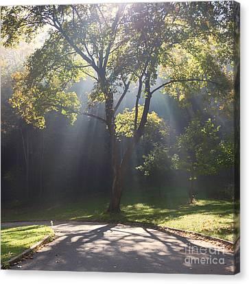 Inspirational Scene Sun Streaming Fog Square Canvas Print