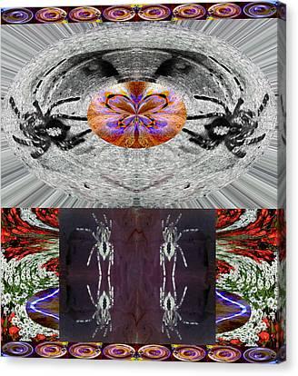 Order From Disorder Canvas Print - Inspiring Trust Spider - Spirit 2013 by James Warren