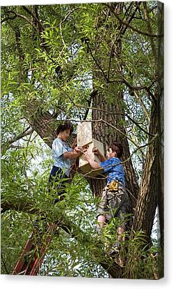 Eco-friendly Canvas Print - Installing A Nesting Box by Jim West