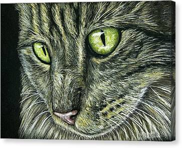 Intense Canvas Print by Michelle Wrighton