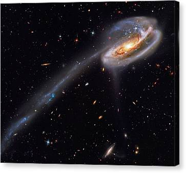 Interacting Galaxies Canvas Print