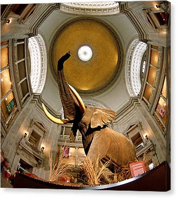 Interiors Of A Museum, National Museum Canvas Print by Panoramic Images