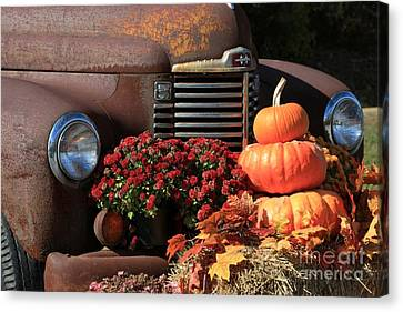 International Autumn Canvas Print by Benanne Stiens