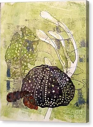 Intertidal Canvas Print
