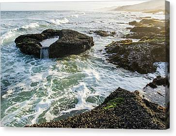Intertidal Zone Impacted By Wave Action Canvas Print by Peter Chadwick