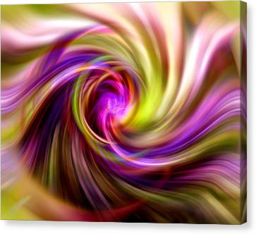 Interweaving Canvas Print