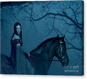Into The Black Forest Canvas Print