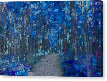 Into The Blue Forest Canvas Print by Dan Sproul