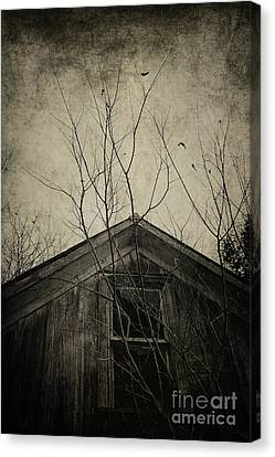 Into The Dark Past Canvas Print by Trish Mistric