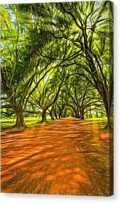 Into The Deep South - Paint 2 Canvas Print by Steve Harrington