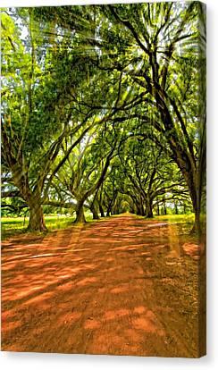 Evergreen Plantation Canvas Print - Into The Deep South Paint by Steve Harrington