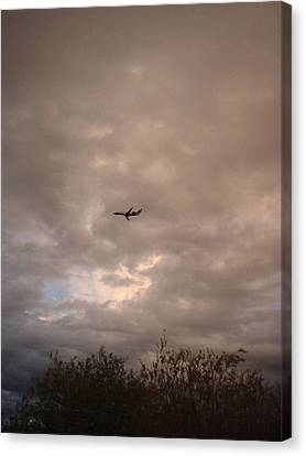 Into The Evening Sky Canvas Print by Yvette Pichette