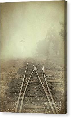 Into The Fog Canvas Print by Elaine Teague