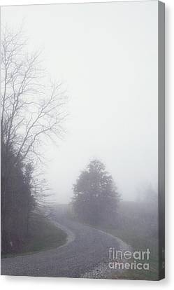 Into The Fog Canvas Print by Kay Pickens