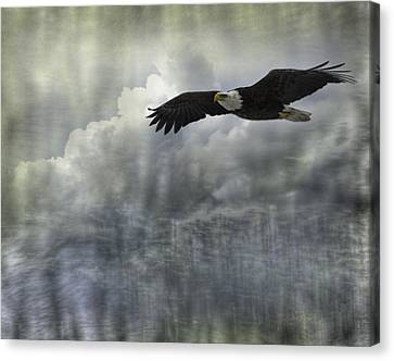 Into The Heavens Canvas Print by Thomas Young
