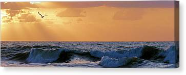 Into The Light Canvas Print by JC Findley