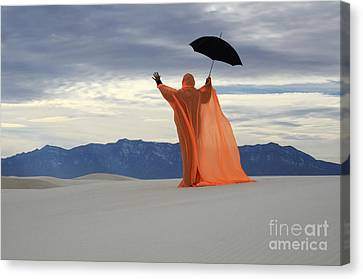 Into The Mystic 3 Canvas Print by Bob Christopher