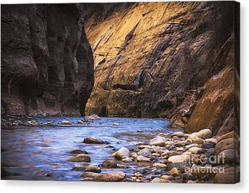 Zion National Park Canvas Print - Into The Narrows by Jennifer Magallon