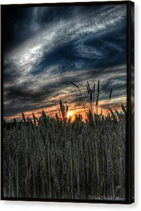 Into The Night Canvas Print