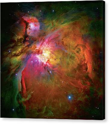 Into The Orion Nebula Canvas Print