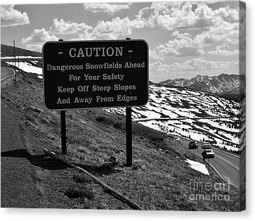 Into The Rockies Canvas Print