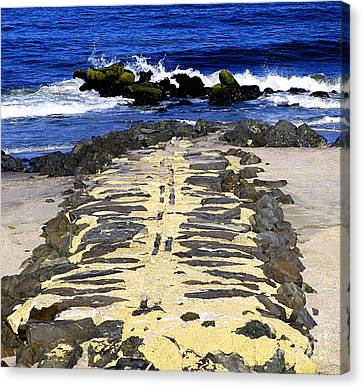 Into The Sea Canvas Print by Colleen Kammerer