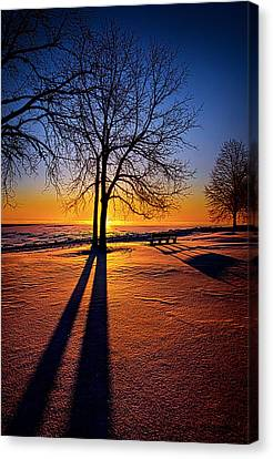 Benches Canvas Print - Into The Shadows Of Light by Phil Koch