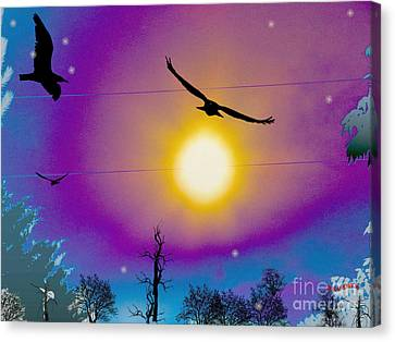 Into The Sun Canvas Print by Bobby Hammerstone