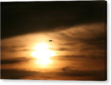 Canvas Print featuring the photograph Into The Sun by David S Reynolds