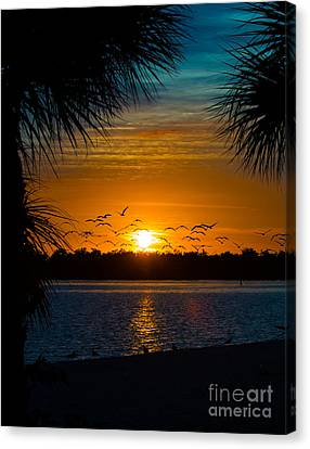 Into The Sunset Canvas Print by Anne Kitzman