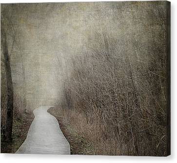 Into The Unknown Canvas Print by Jai Johnson