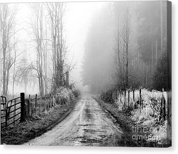 Into The Unknown Canvas Print by Rory Sagner
