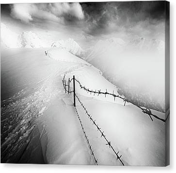 Barbed Wire Canvas Print - Into The White by Luca Rebustini