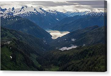 Into The Wild Canvas Print by Mike Reid
