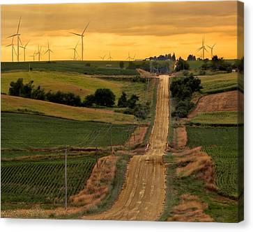 Into The Wind Canvas Print by Nikolyn McDonald