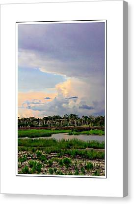 Intracoastal Colours Canvas Print by Alice Gipson