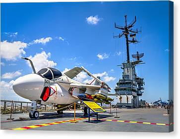 Intruder On The Lexington Canvas Print by Tim Stanley