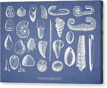 Invertebrates Canvas Print by Aged Pixel
