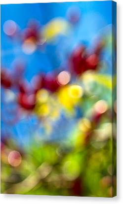 Autum Abstract Canvas Print - iPhone Case - Colors Of Autumn by Alexander Senin