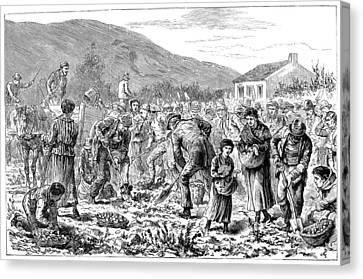 Ireland Peasants, 1886 Canvas Print