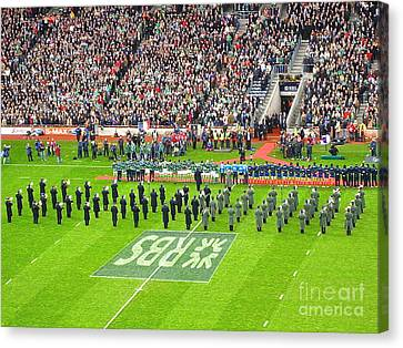 Ireland Vs France Canvas Print by Suzanne Oesterling