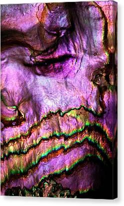 Iridescent Nacre Abalone Shell Colour Canvas Print