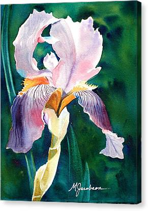 Iris 1 Canvas Print by Marilyn Jacobson
