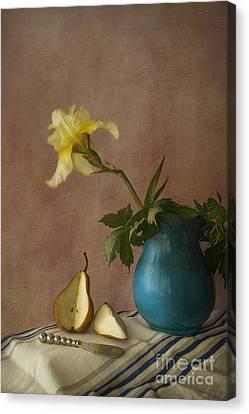 Iris And Pear Canvas Print by Elena Nosyreva