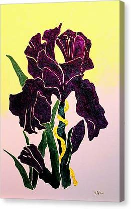 Iris Canvas Print by Andrew Petras