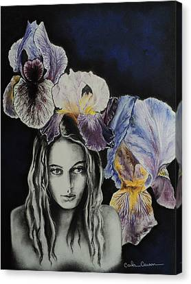 Canvas Print featuring the drawing Iris by Carla Carson