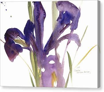Iris Canvas Print by Claudia Hutchins-Puechavy